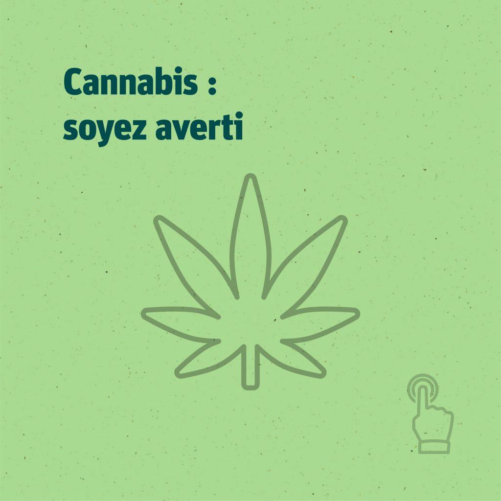 Cannabis : soyez averti